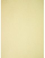 БР001-6 Бумага с рельефным рисунком
