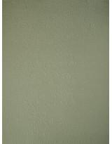 БР001-8 Бумага с рельефным рисунком